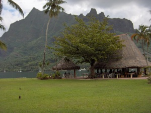the Blue Pineapple on Moorea, where we first tasted poisson cru