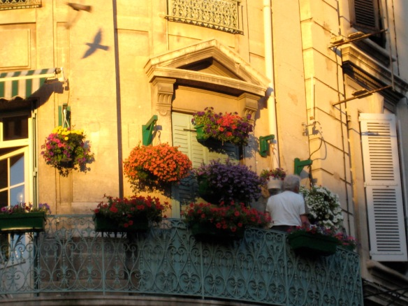 A man tends to flowers on his balcony in Avignon