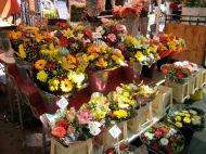 Marche des fleurs