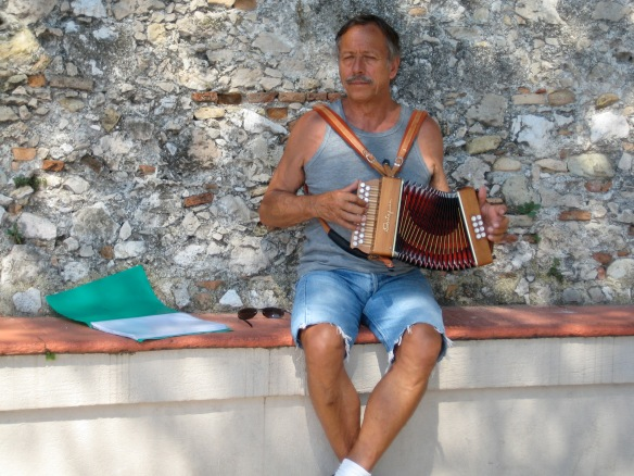 Accordionist on the Fete de la musique
