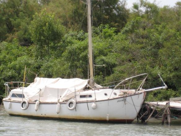 536 le Camargue
