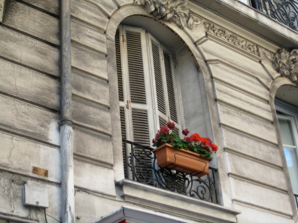 132 Window in Nice