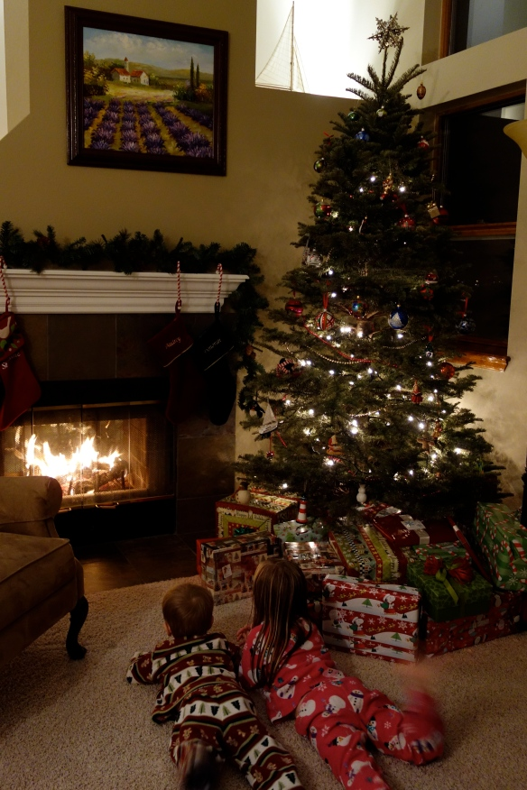 Our kids enjoying a warm fire and the Christmas tree